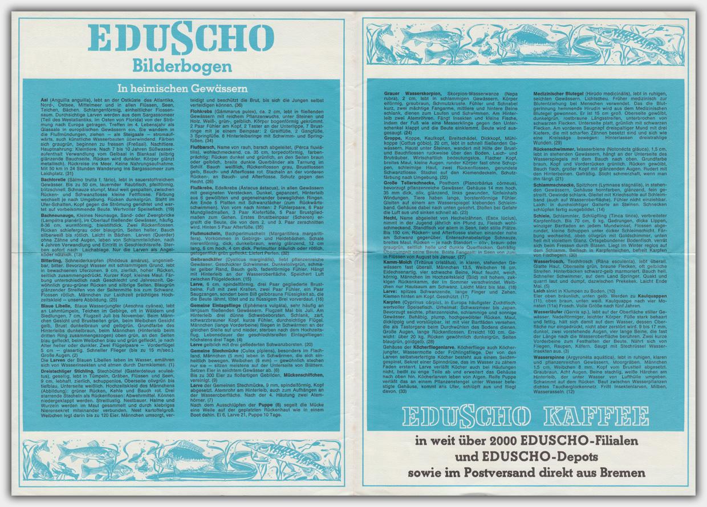 Eduscho Bilderbogen | In heimischen Gewässern | Rückseite